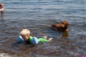 hund og barn koser seg